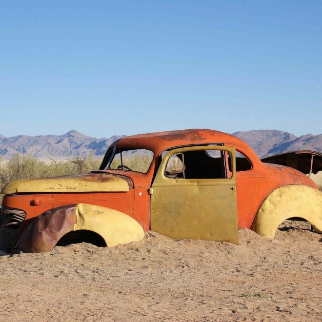 Trace de vie dans le désert