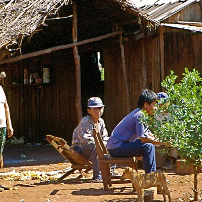 Indiens guarani