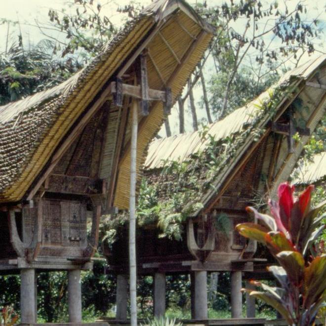 habitation du pays Toraja