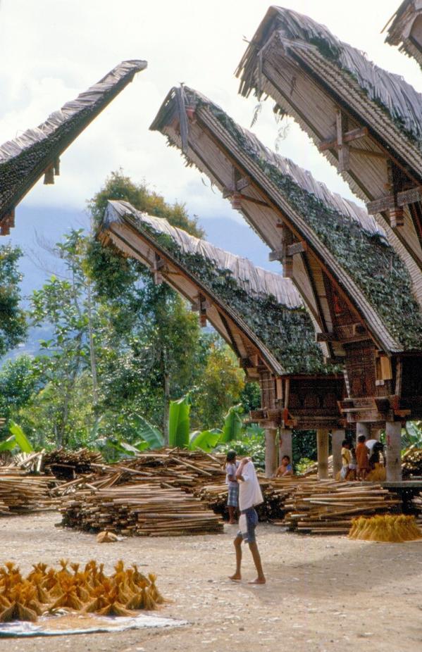 Village en pays toradja
